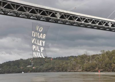 NO PULP MILL banner
